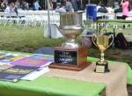 Vendy Cup Awards