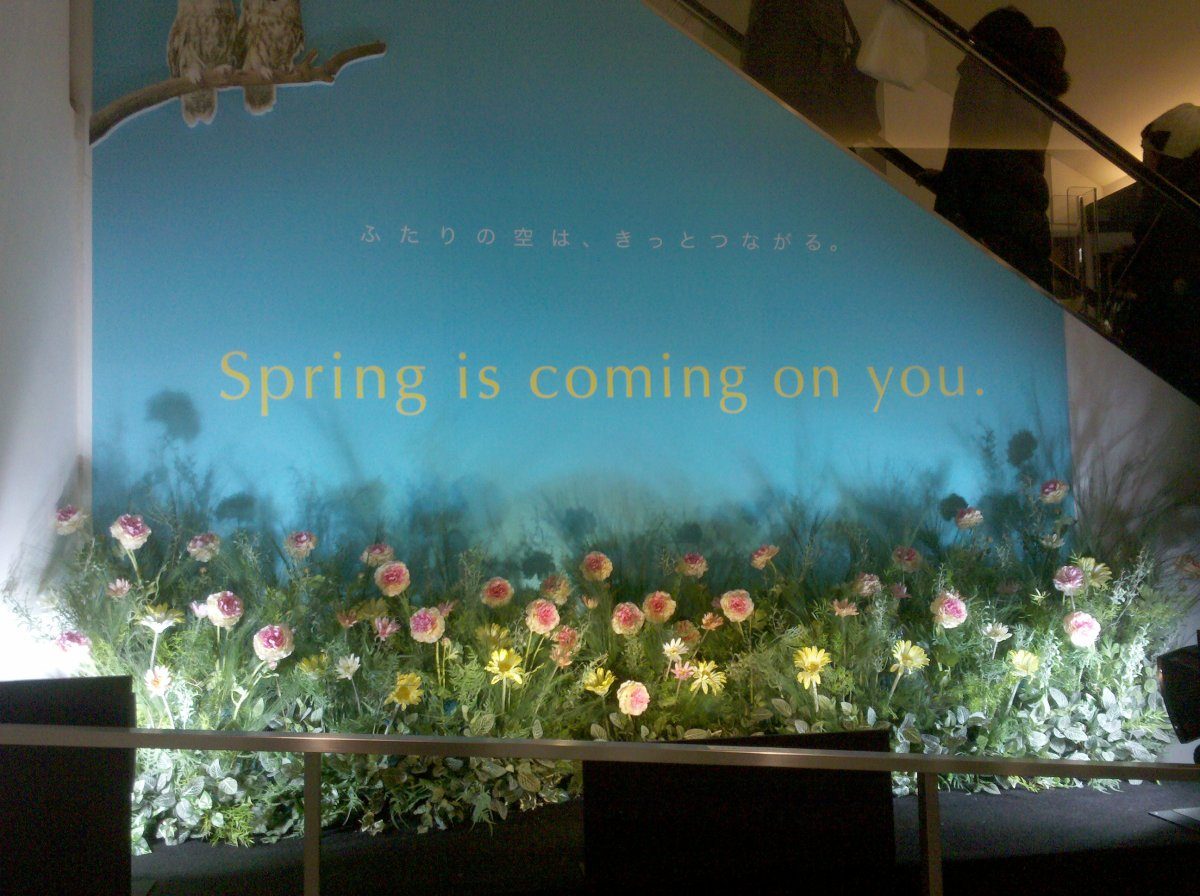 """""""Spring is coming on you"""""""
